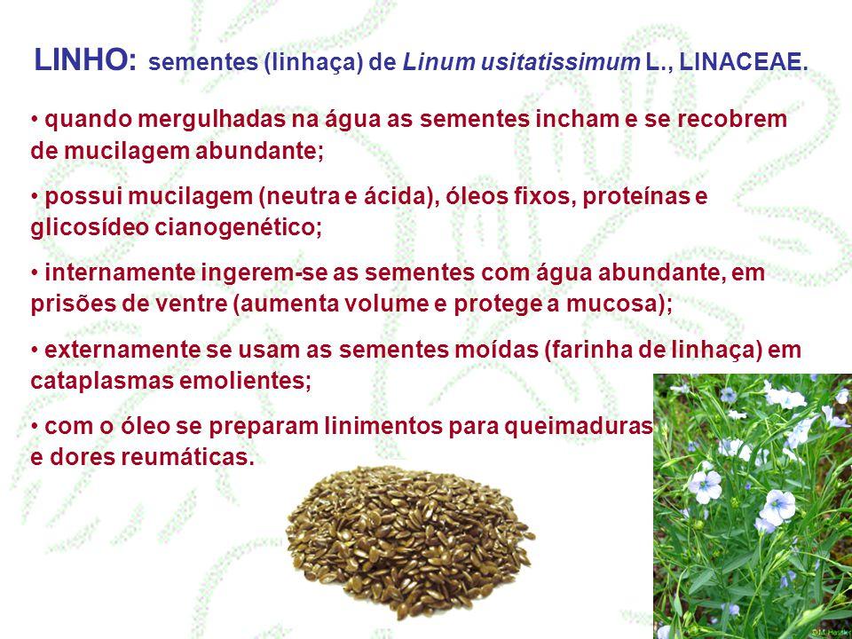 LINHO: sementes (linhaça) de Linum usitatissimum L., LINACEAE. quando mergulhadas na água as sementes incham e se recobrem de mucilagem abundante; pos