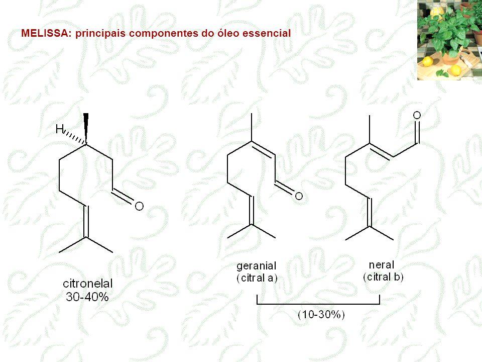 MELISSA: principais componentes do óleo essencial