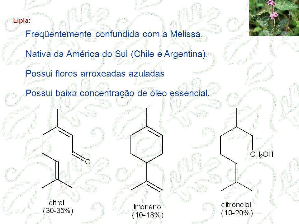 Freqüentemente confundida com a Melissa. Nativa da América do Sul (Chile e Argentina). Possui flores arroxeadas azuladas Possui baixa concentração de