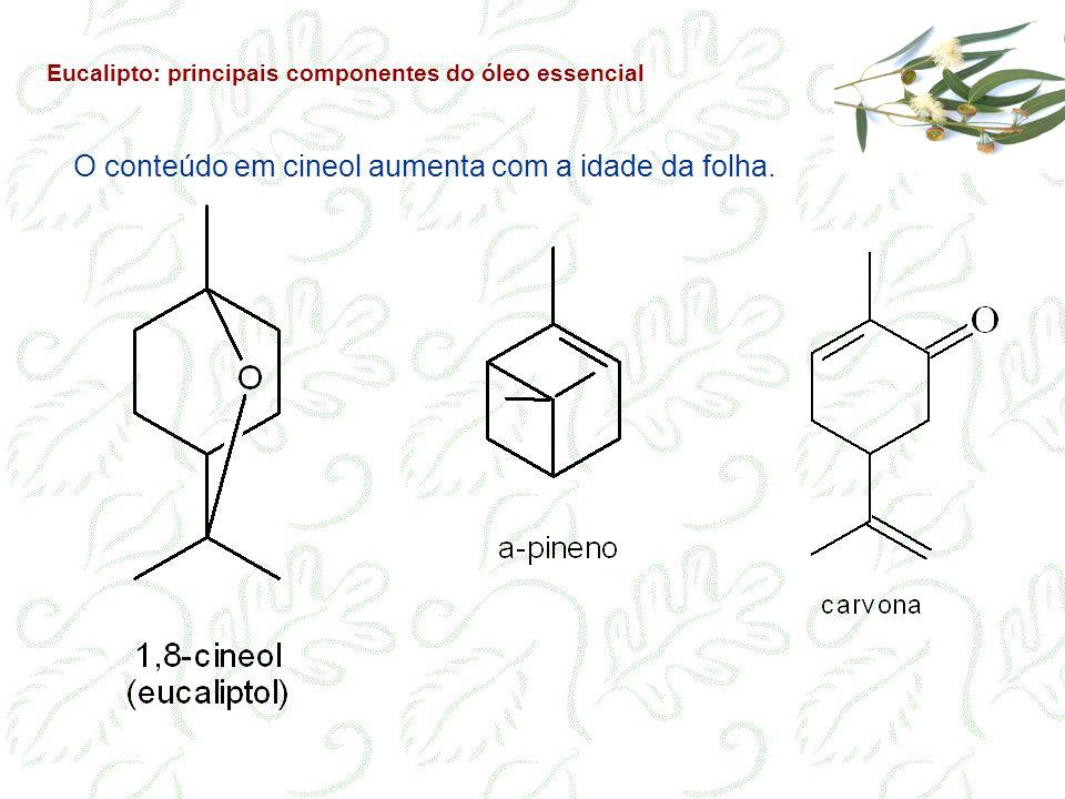 Eucalipto: principais componentes do óleo essencial O conteúdo em cineol aumenta com a idade da folha.
