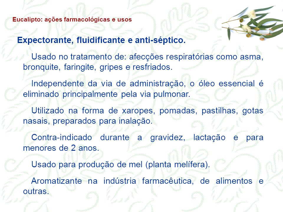 Expectorante, fluidificante e anti-séptico. Usado no tratamento de: afecções respiratórias como asma, bronquite, faringite, gripes e resfriados. Indep
