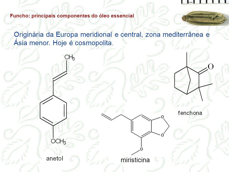 Funcho: principais componentes do óleo essencial Originária da Europa meridional e central, zona mediterrânea e Ásia menor. Hoje é cosmopolita. mirist