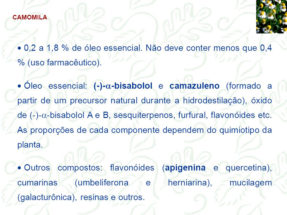 CAMOMILA 0,2 a 1,8 % de óleo essencial. Não deve conter menos que 0,4 % (uso farmacêutico). Óleo essencial: (-)- -bisabolol e camazuleno (formado a pa