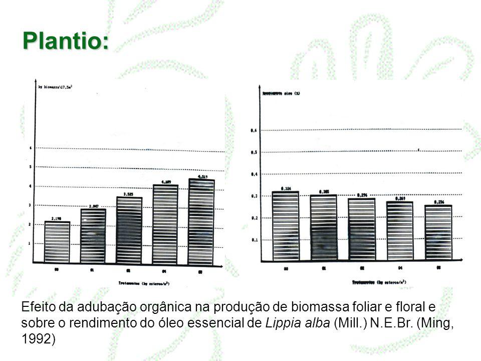 Plantio: Efeito da adubação orgânica na produção de biomassa foliar e floral e sobre o rendimento do óleo essencial de Lippia alba (Mill.) N.E.Br. (Mi