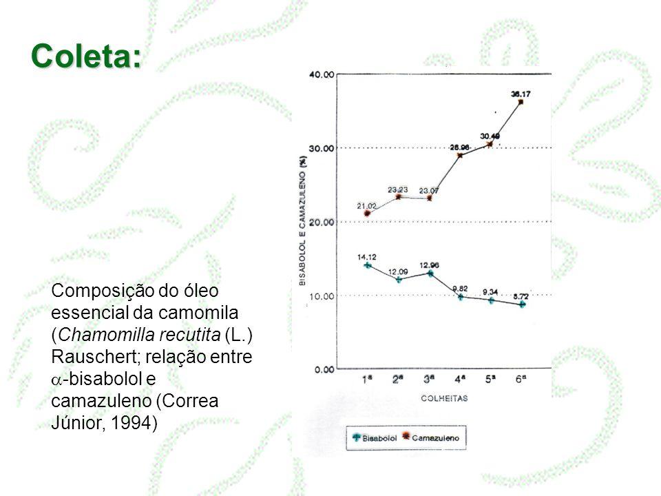 Coleta: Composição do óleo essencial da camomila (Chamomilla recutita (L.) Rauschert; relação entre -bisabolol e camazuleno (Correa Júnior, 1994)