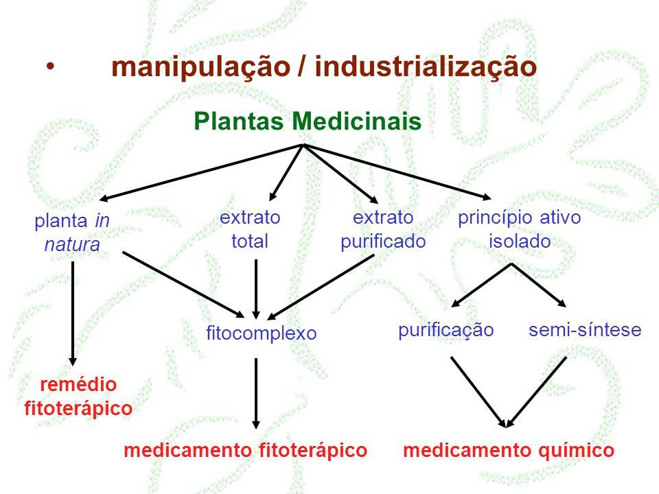 Plantas Medicinais planta in natura extrato total extrato purificado princípio ativo isolado purificação semi-síntese fitocomplexo medicamento químico