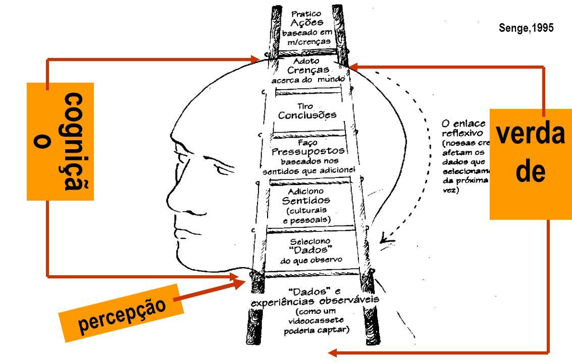 percepção cogniçã o verda de Senge,1995