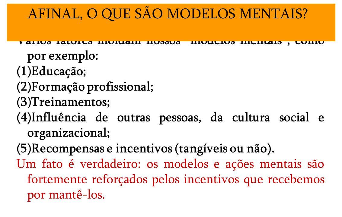 Vários fatores moldam nossos modelos mentais, como por exemplo: (1)Educação; (2)Formação profissional; (3)Treinamentos; (4)Influência de outras pessoas, da cultura social e organizacional; (5)Recompensas e incentivos (tangíveis ou não).