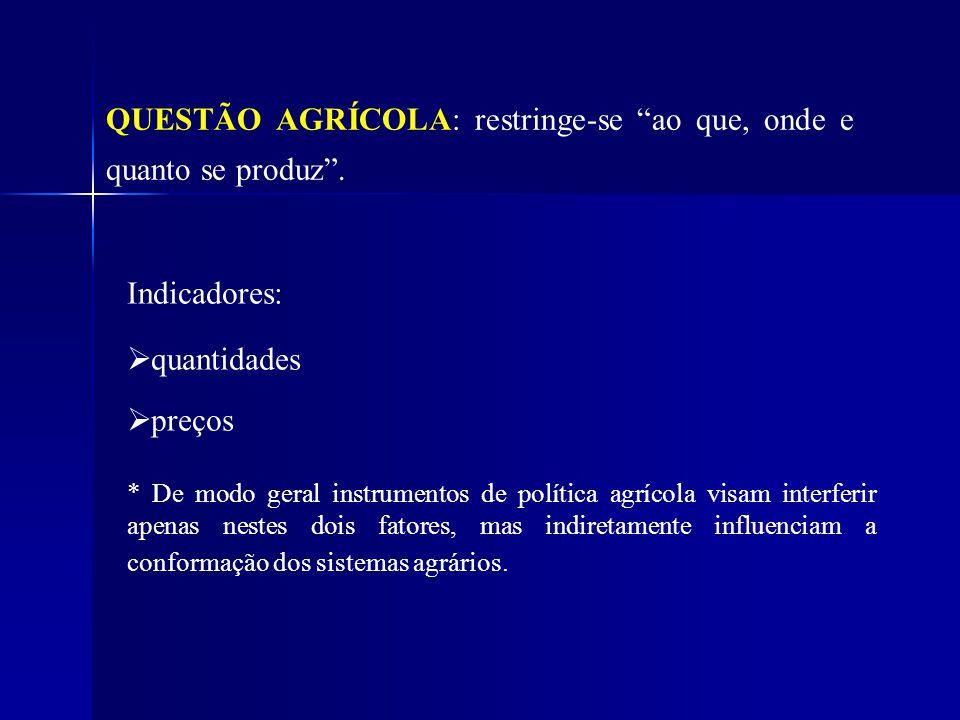 QUESTÃO AGRÍCOLA: restringe-se ao que, onde e quanto se produz. Indicadores: quantidades preços * De modo geral instrumentos de política agrícola visa