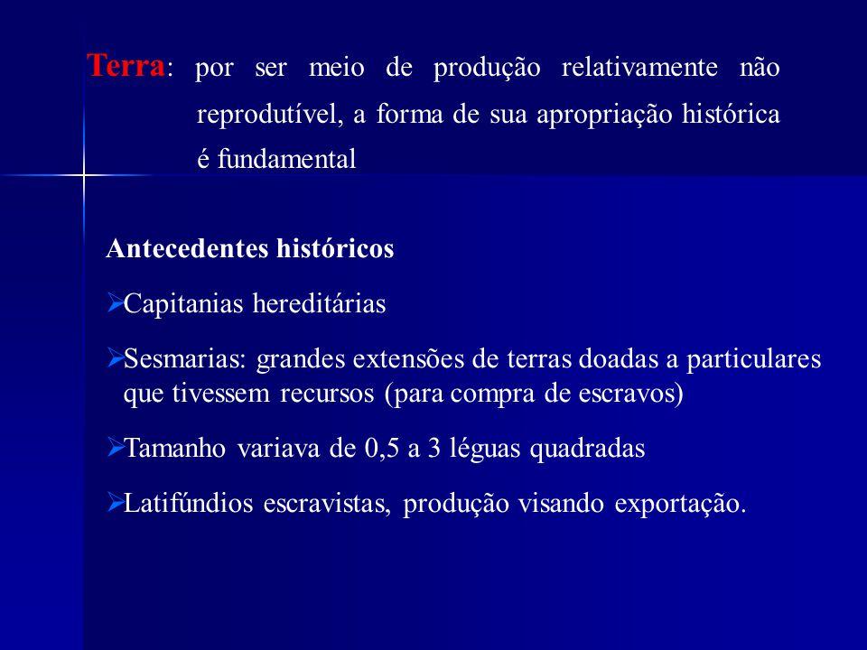 Antecedentes históricos Capitanias hereditárias Sesmarias: grandes extensões de terras doadas a particulares que tivessem recursos (para compra de esc