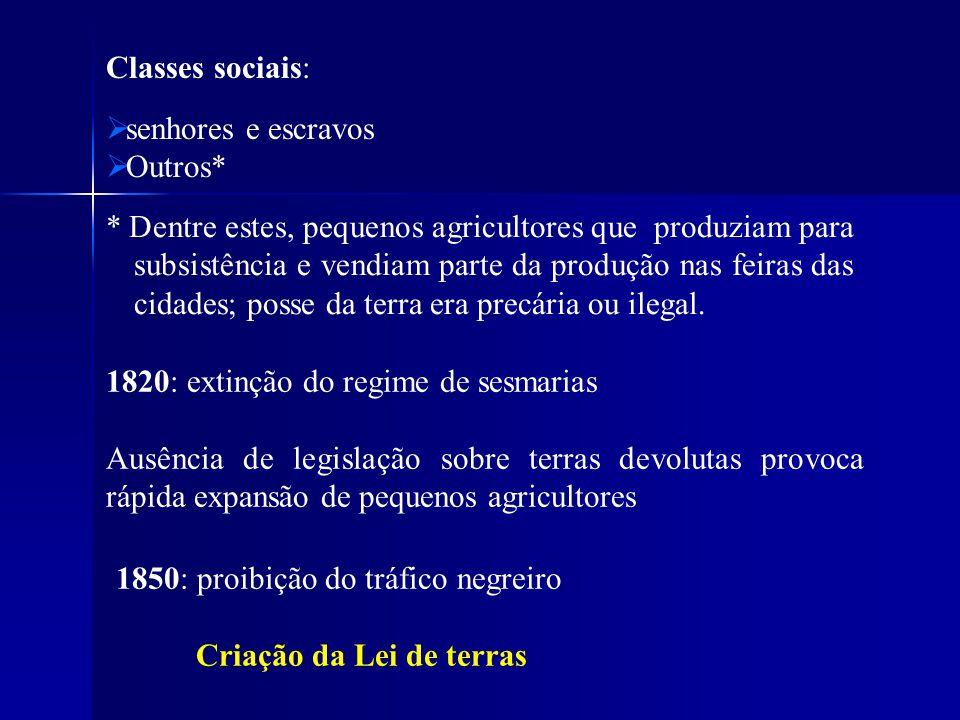 Classes sociais: senhores e escravos Outros* 1820: extinção do regime de sesmarias Ausência de legislação sobre terras devolutas provoca rápida expans