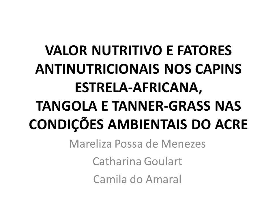 VALOR NUTRITIVO E FATORES ANTINUTRICIONAIS NOS CAPINS ESTRELA-AFRICANA, TANGOLA E TANNER-GRASS NAS CONDIÇÕES AMBIENTAIS DO ACRE Mareliza Possa de Menezes Catharina Goulart Camila do Amaral