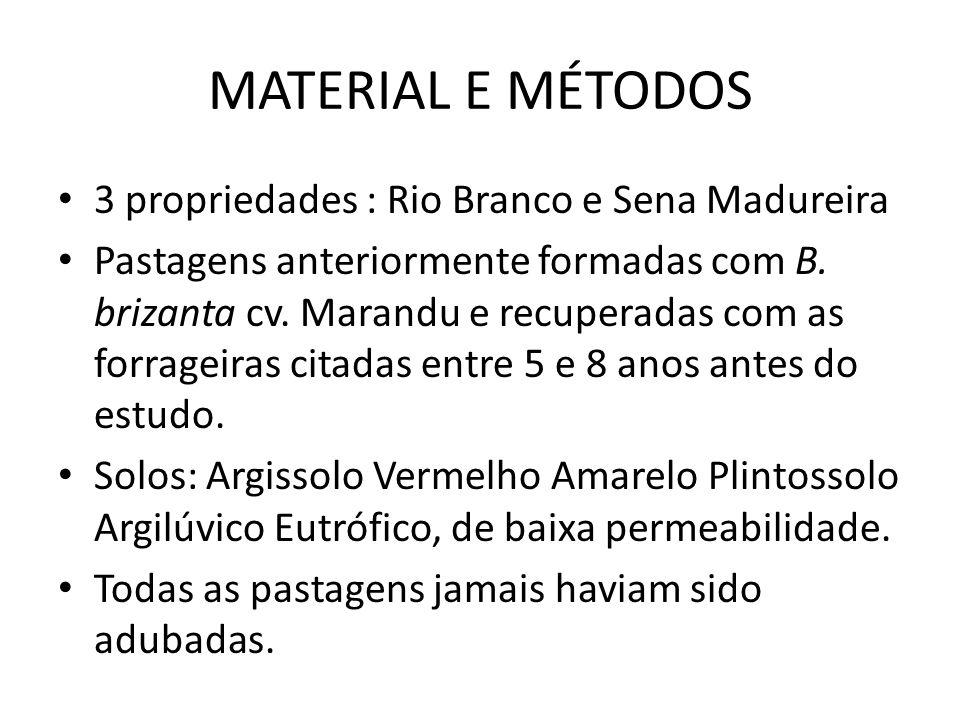 MATERIAL E MÉTODOS 3 propriedades : Rio Branco e Sena Madureira Pastagens anteriormente formadas com B. brizanta cv. Marandu e recuperadas com as forr