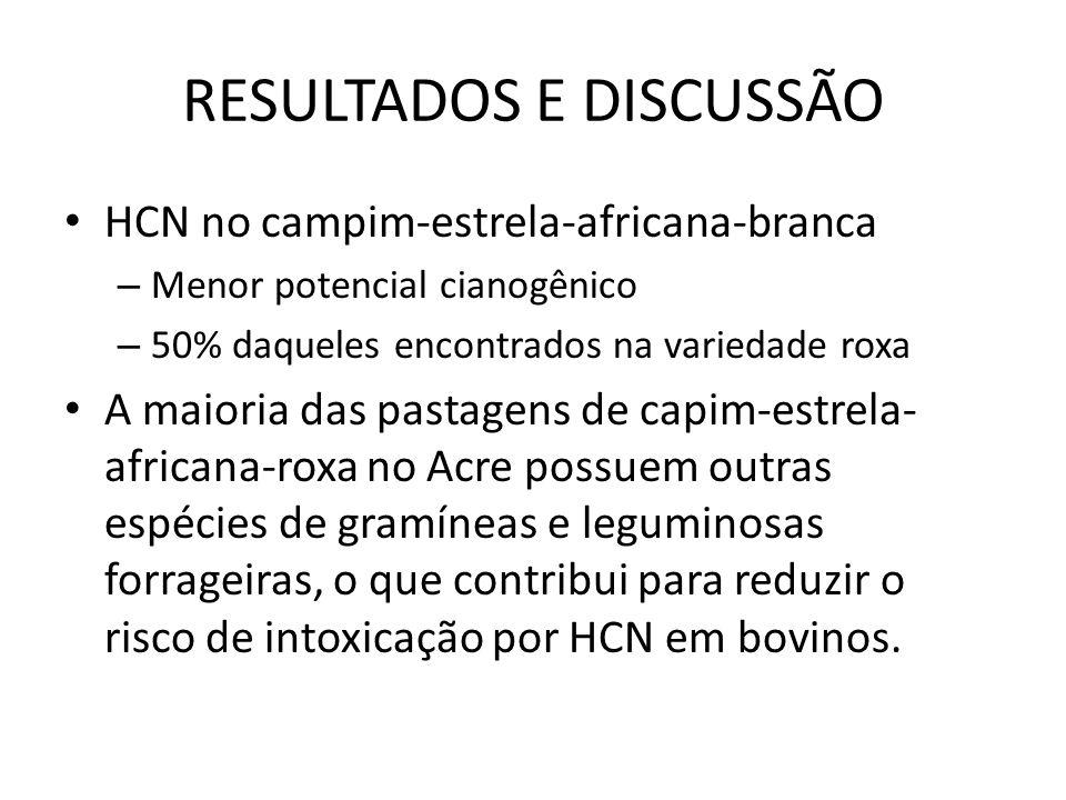 RESULTADOS E DISCUSSÃO HCN no campim-estrela-africana-branca – Menor potencial cianogênico – 50% daqueles encontrados na variedade roxa A maioria das