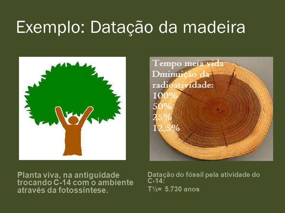 Exemplo: Datação da madeira Planta viva, na antiguidade trocando C-14 com o ambiente através da fotossíntese. Datação do fóssil pela atividade do C-14