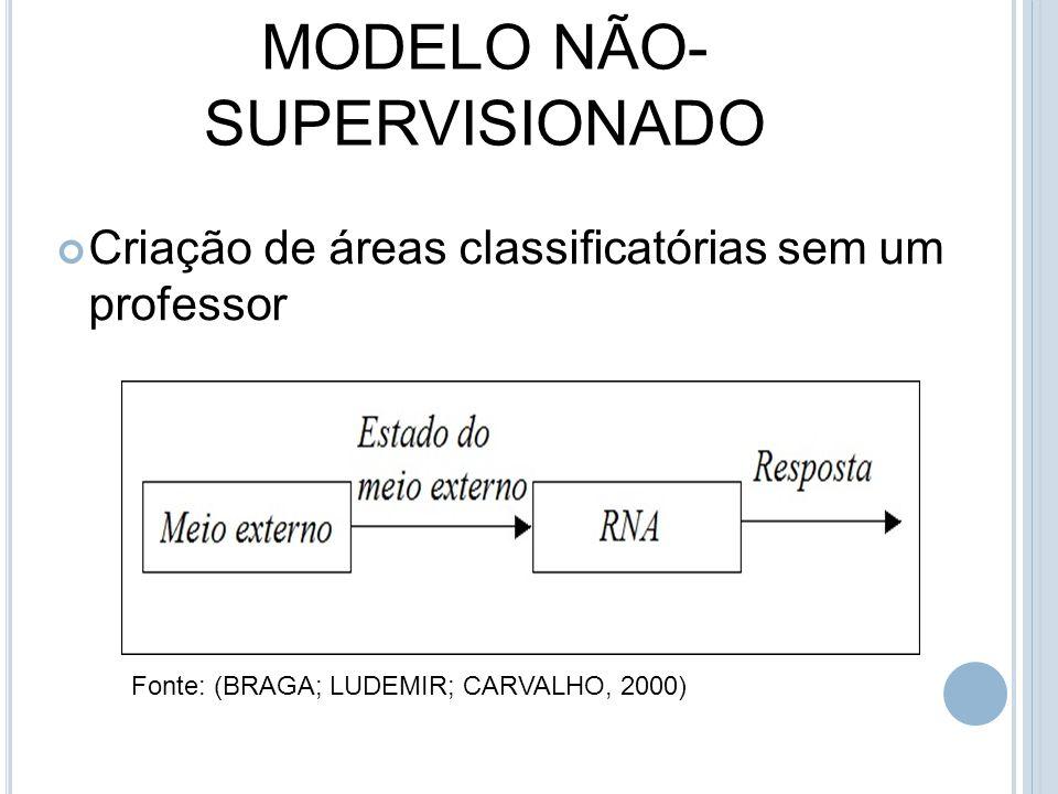 MODELO NÃO- SUPERVISIONADO Criação de áreas classificatórias sem um professor Fonte: (BRAGA; LUDEMIR; CARVALHO, 2000)