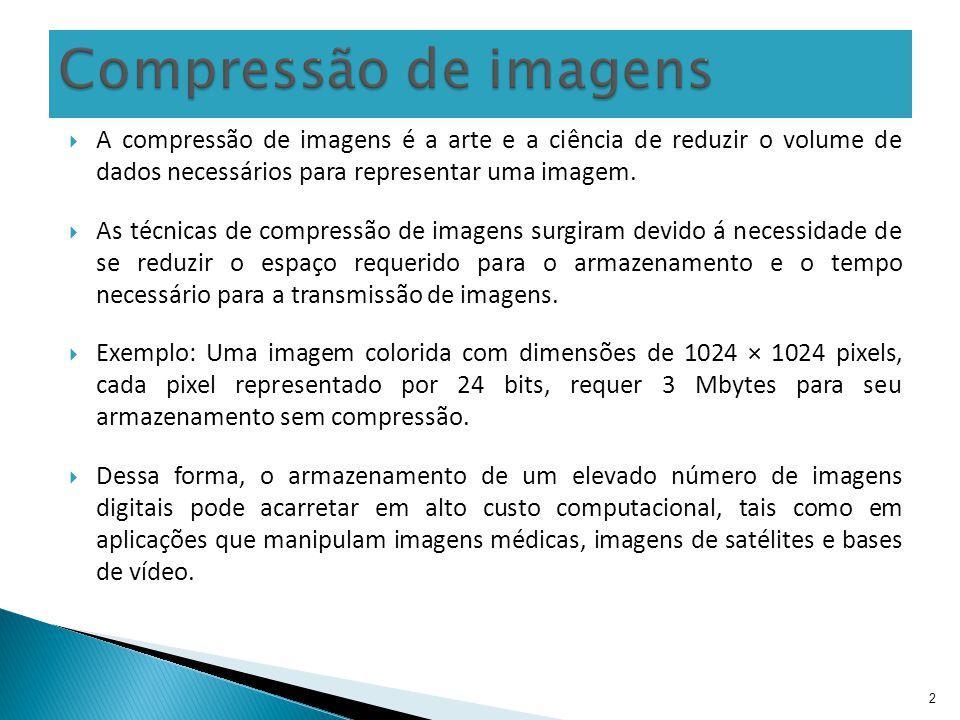 A compressão de imagens é a arte e a ciência de reduzir o volume de dados necessários para representar uma imagem. As técnicas de compressão de imagen