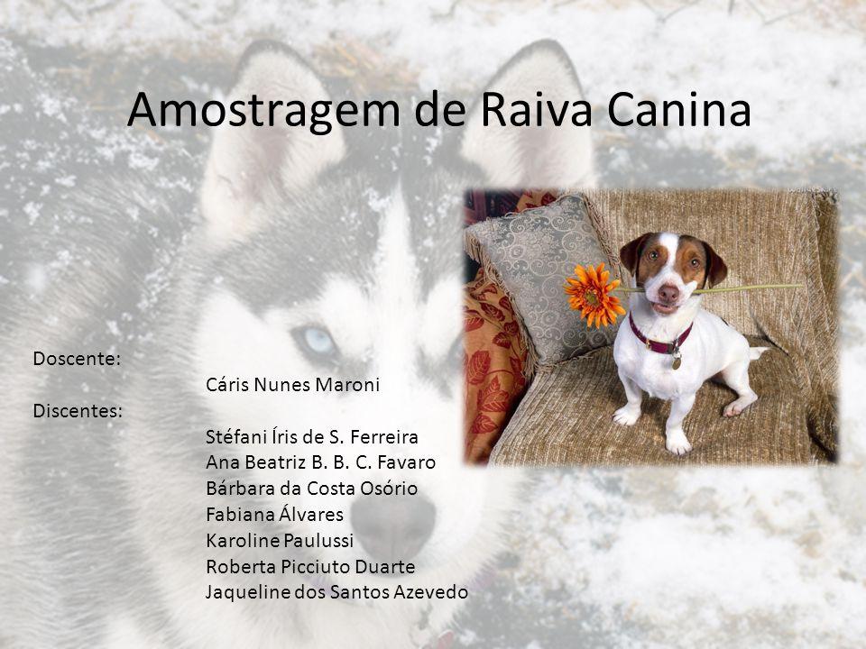 Campanhas Anuais de Vacinação contra a Raiva Estabelecer, em curto espaço de tempo, uma barreira imunológica capaz de interromper a transmissão da raiva na população canina de uma comunidade e o comprometimento das populações felina e humana.
