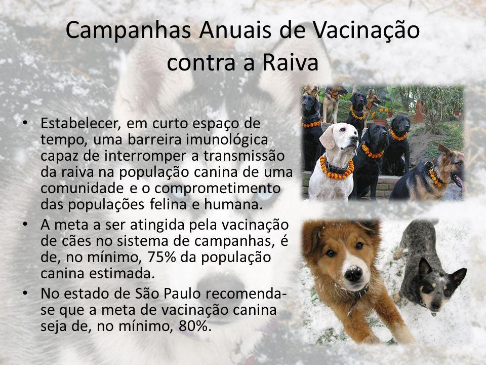 Estimativa da população canina O planejamento da campanha de vacinação depende de uma cuidadosa estimativa da população canina.