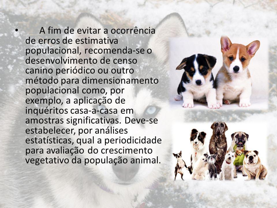 A fim de evitar a ocorrência de erros de estimativa populacional, recomenda-se o desenvolvimento de censo canino periódico ou outro método para dimens