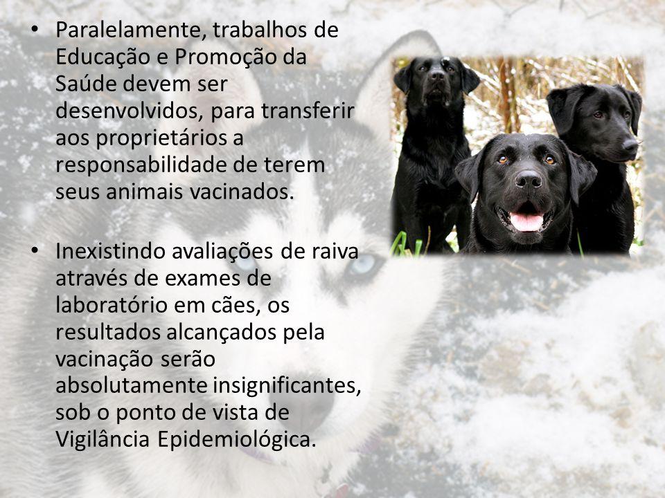 Previsão de doses de vacina Para o cálculo dos recursos necessários para a Campanha Anual de Vacinação Contra a Raiva Canina, utiliza-se o valor total de cães estimados para determinado município, devendo-se lembrar que o risco de falta de material por subestimativa precisa ser mínimo.