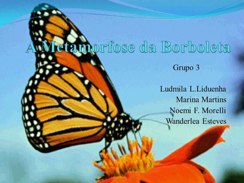 Grupo 3 Ludmila L.Liduenha Marina Martins Noemi F. Morelli Wanderlea Esteves