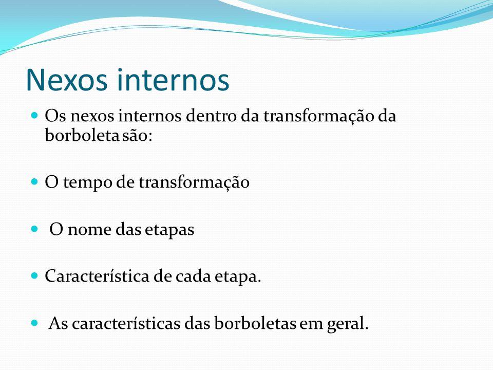 Nexos internos Os nexos internos dentro da transformação da borboleta são: O tempo de transformação O nome das etapas Característica de cada etapa. As