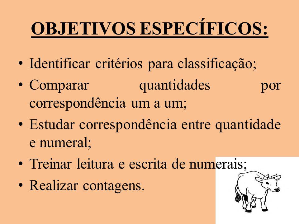 OBJETIVOS ESPECÍFICOS: Identificar critérios para classificação; Comparar quantidades por correspondência um a um; Estudar correspondência entre quant