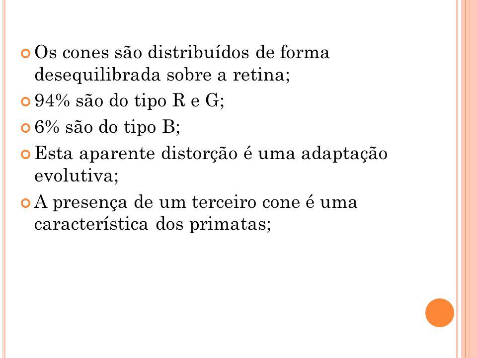 O S IGNIFICADO DAS C ORES...