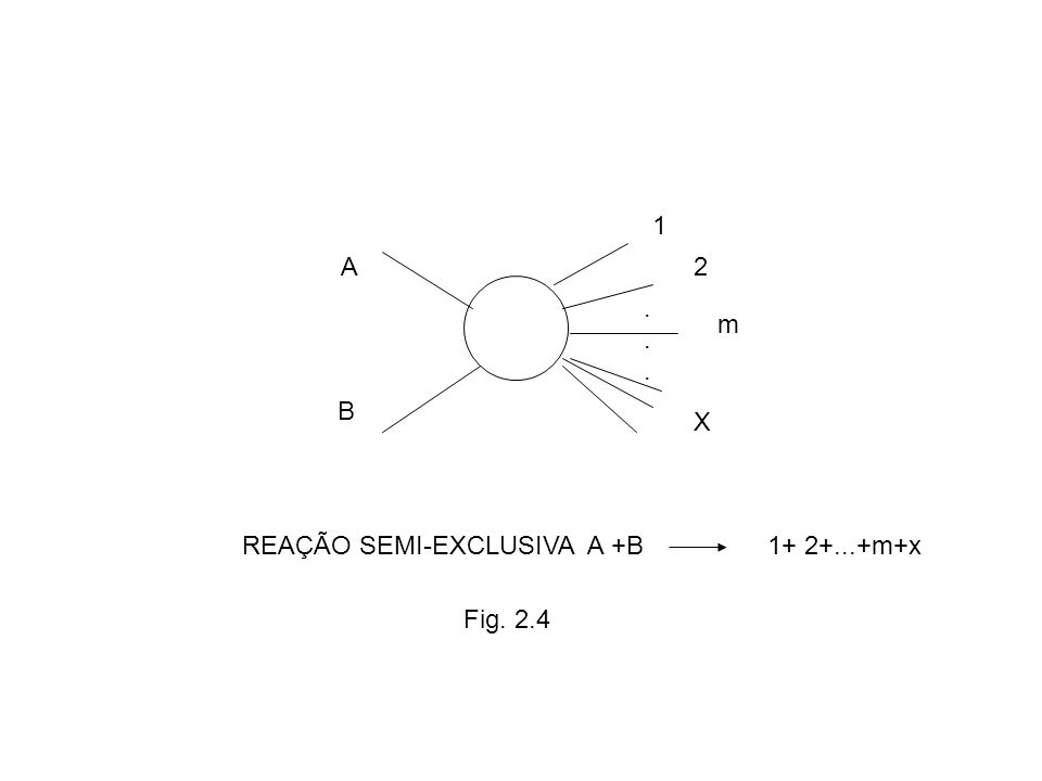 A B 1 2...... m X REAÇÃO SEMI-EXCLUSIVA A +B1+ 2+...+m+x Fig. 2.4