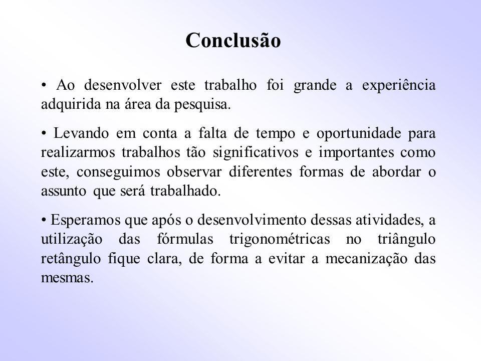 Conclusão Ao desenvolver este trabalho foi grande a experiência adquirida na área da pesquisa.