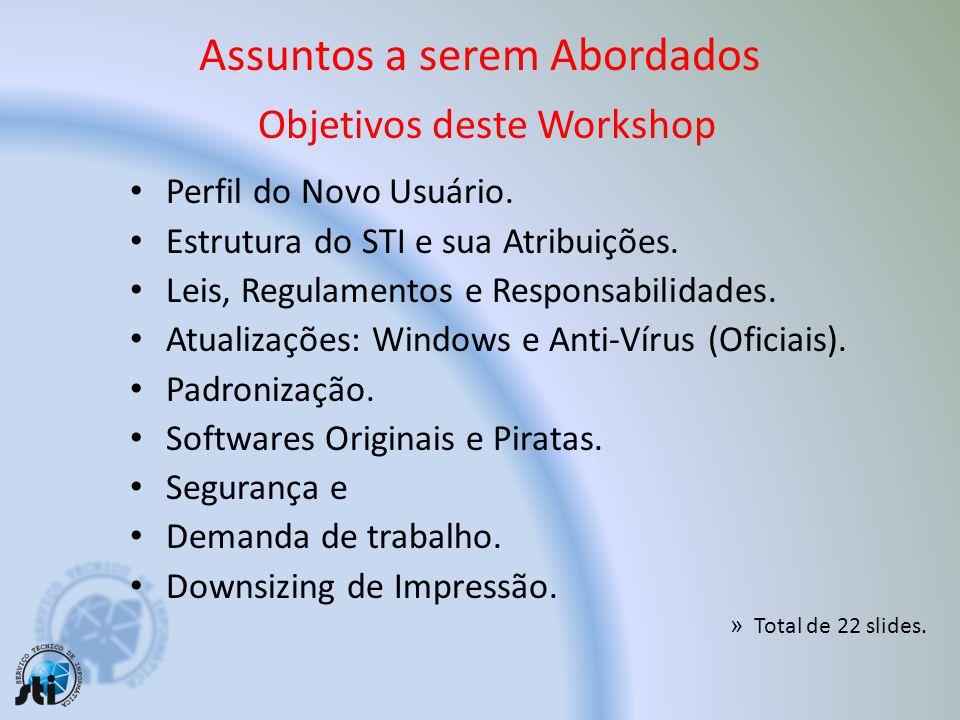 Assuntos a serem Abordados Objetivos deste Workshop Perfil do Novo Usuário.