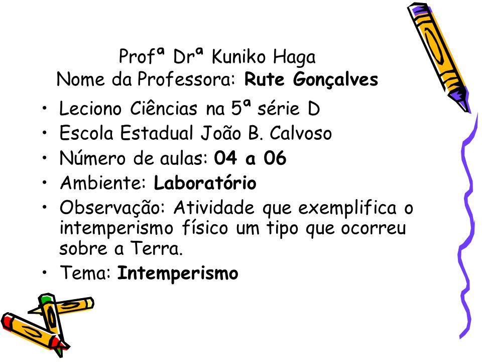 Profª Drª Kuniko Haga Nome da Professora: Rute Gonçalves Leciono Ciências na 5ª série D Escola Estadual João B. Calvoso Número de aulas: 04 a 06 Ambie