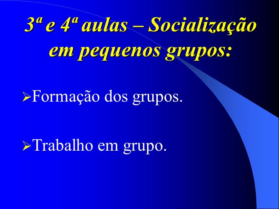 3ª e 4ª aulas – Socialização em pequenos grupos: Formação dos grupos. Trabalho em grupo.