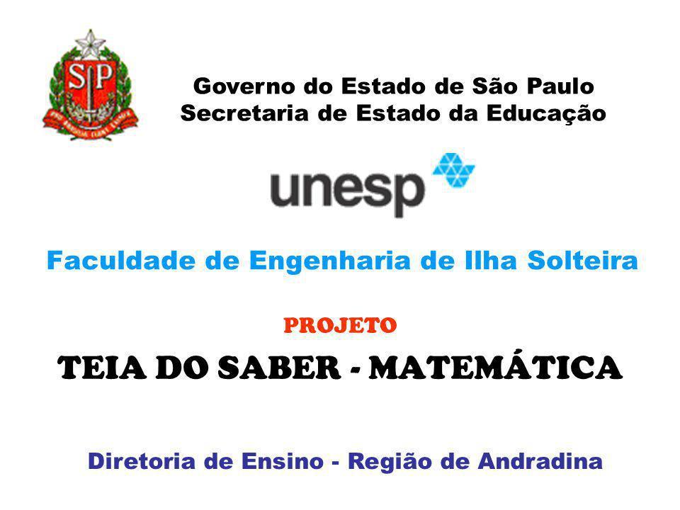 Faculdade de Engenharia de Ilha Solteira PROJETO TEIA DO SABER - MATEMÁTICA Governo do Estado de São Paulo Secretaria de Estado da Educação Diretoria