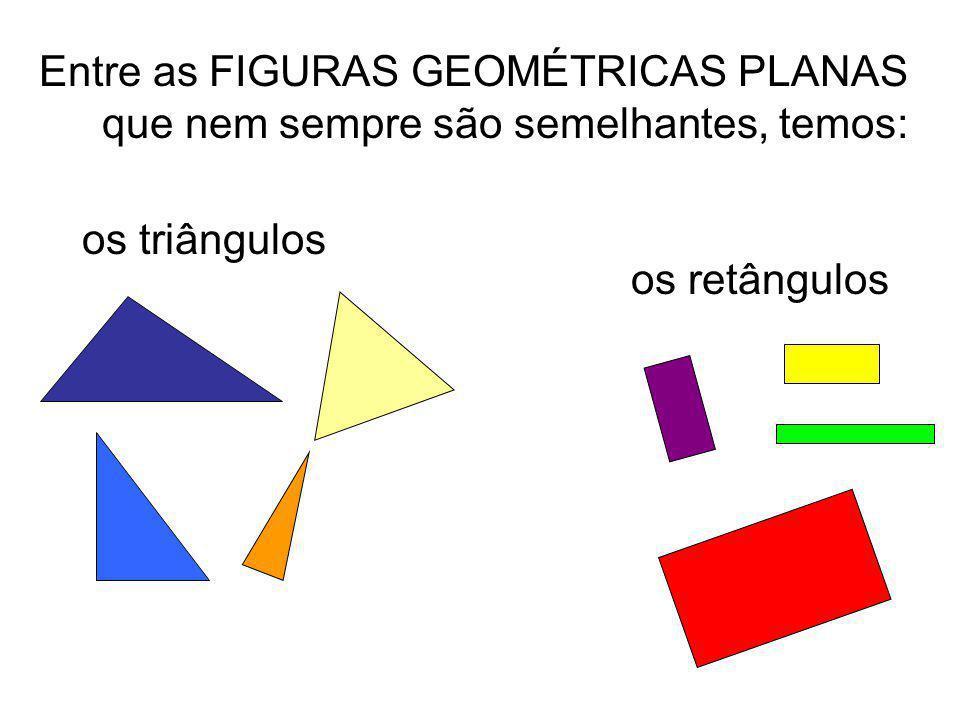 Entre as FIGURAS GEOMÉTRICAS PLANAS que nem sempre são semelhantes, temos: os retângulos os triângulos