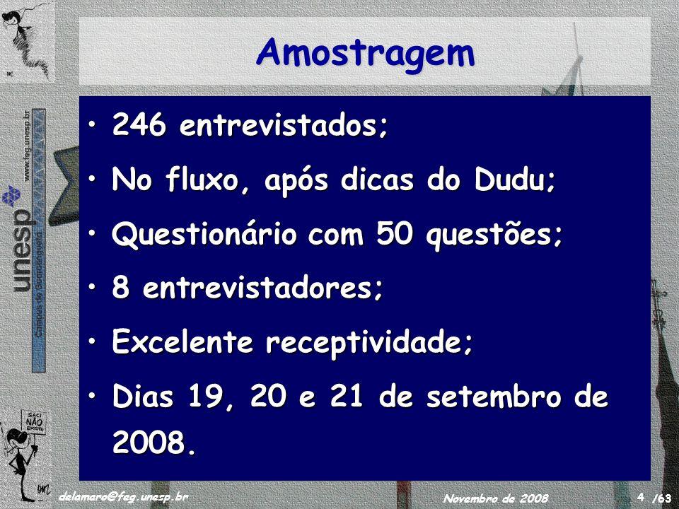 /63 delamaro@feg.unesp.br Novembro de 2008 4 Amostragem 246 entrevistados;246 entrevistados; No fluxo, após dicas do Dudu;No fluxo, após dicas do Dudu