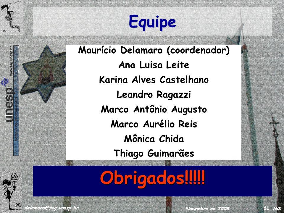 /63 delamaro@feg.unesp.br Novembro de 2008 61 Equipe Obrigados!!!!! Maurício Delamaro (coordenador) Ana Luisa Leite Karina Alves Castelhano Leandro Ra