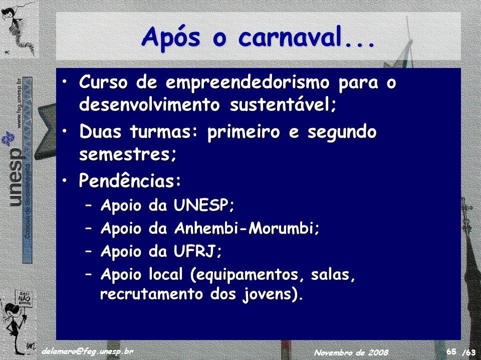 /63 delamaro@feg.unesp.br Novembro de 2008 65 Após o carnaval... Curso de empreendedorismo para o desenvolvimento sustentável;Curso de empreendedorism