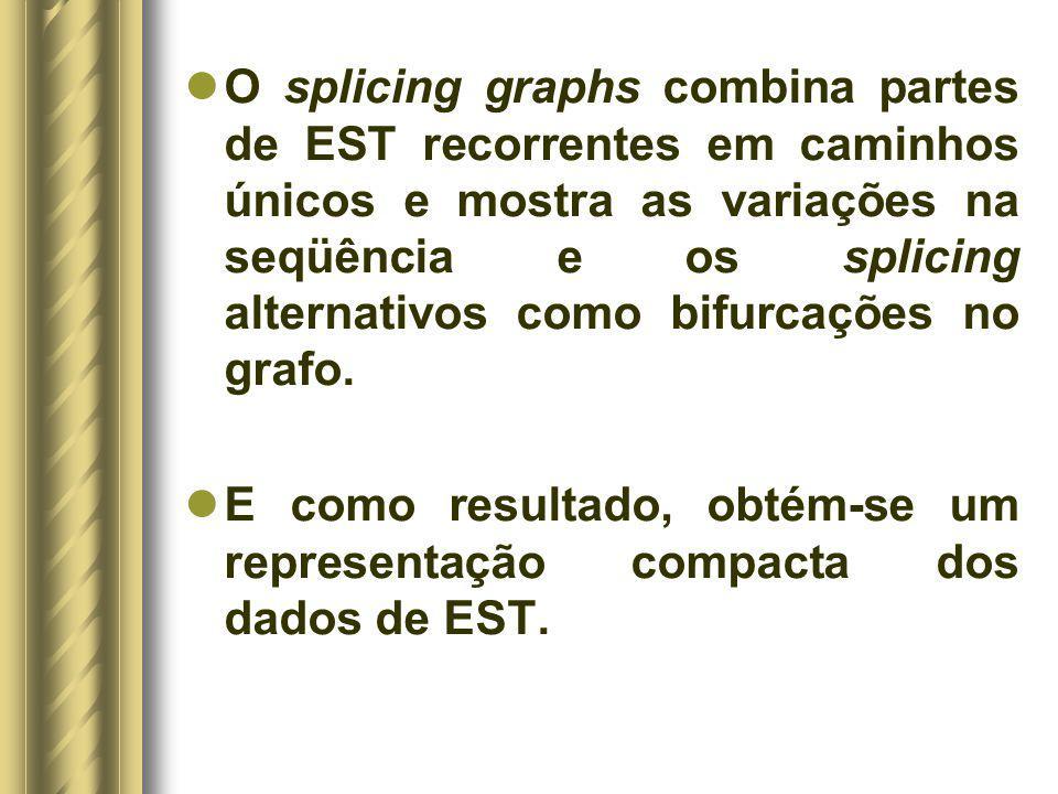 O splicing graphs combina partes de EST recorrentes em caminhos únicos e mostra as variações na seqüência e os splicing alternativos como bifurcações