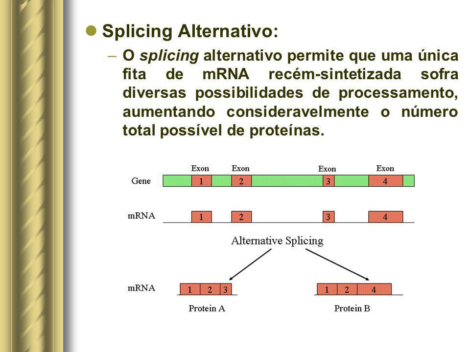 Splicing Alternativo: –O splicing alternativo permite que uma única fita de mRNA recém-sintetizada sofra diversas possibilidades de processamento, aum