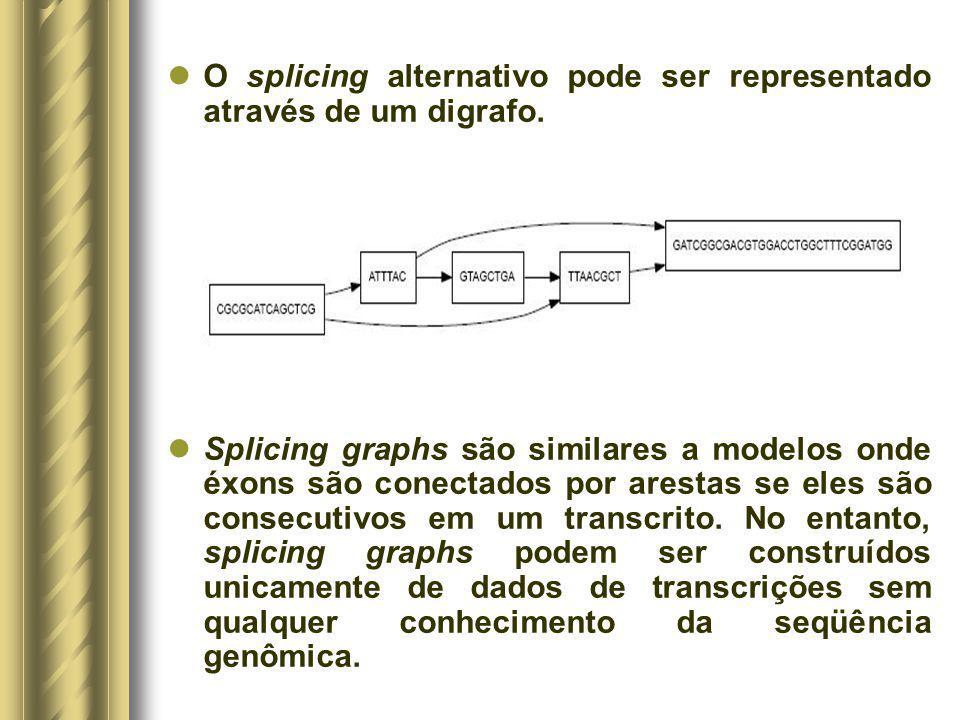 O splicing alternativo pode ser representado através de um digrafo. Splicing graphs são similares a modelos onde éxons são conectados por arestas se e