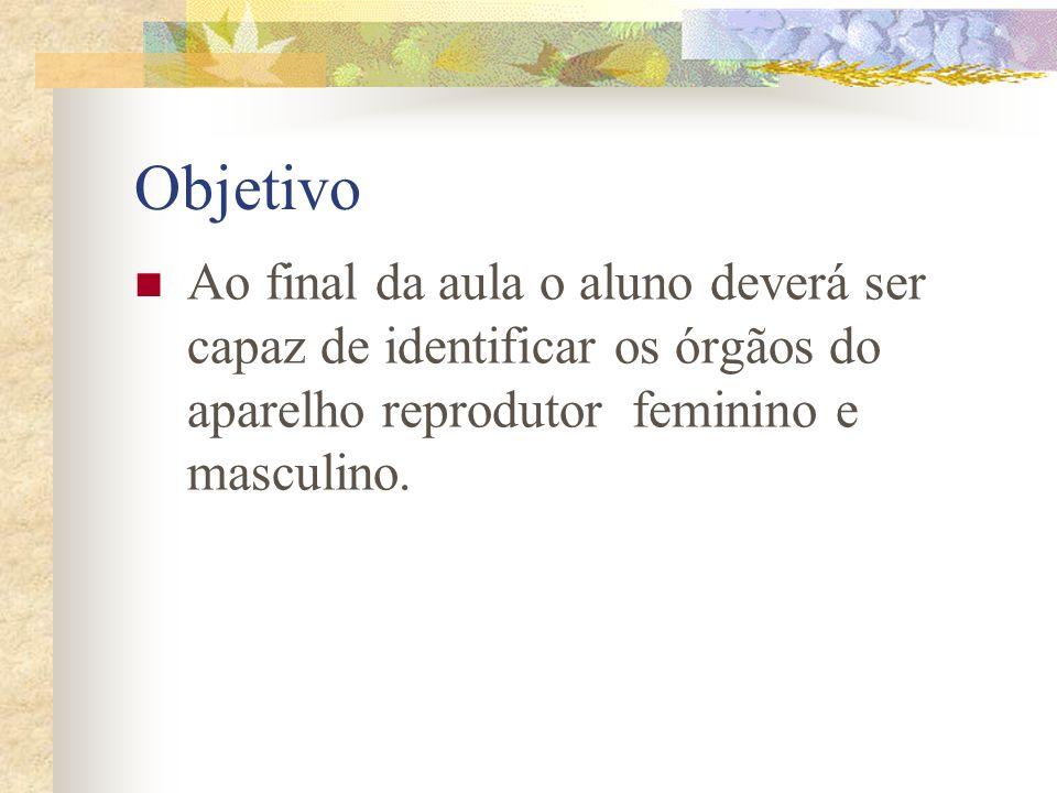 Objetivo Ao final da aula o aluno deverá ser capaz de identificar os órgãos do aparelho reprodutor feminino e masculino.