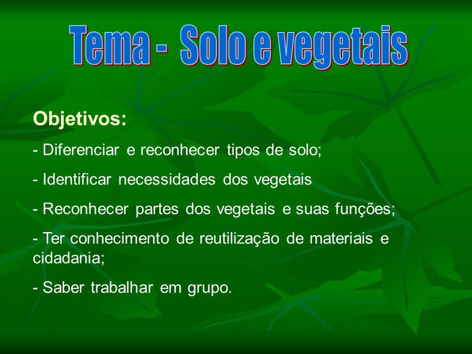 Objetivos: - Diferenciar e reconhecer tipos de solo; - Identificar necessidades dos vegetais - Reconhecer partes dos vegetais e suas funções; - Ter co