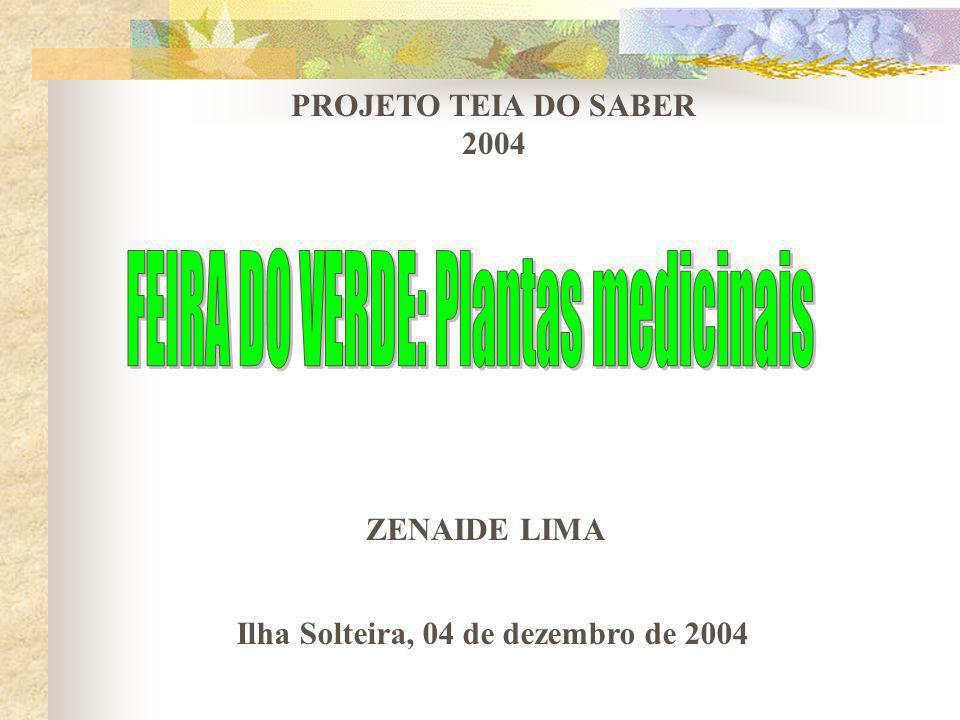 PROJETO TEIA DO SABER 2004 ZENAIDE LIMA Ilha Solteira, 04 de dezembro de 2004