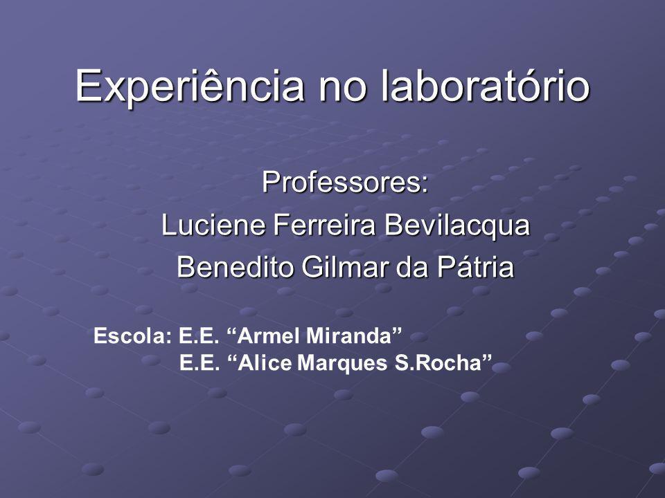 Experiência no laboratório Professores: Luciene Ferreira Bevilacqua Benedito Gilmar da Pátria Escola: E.E. Armel Miranda E.E. Alice Marques S.Rocha