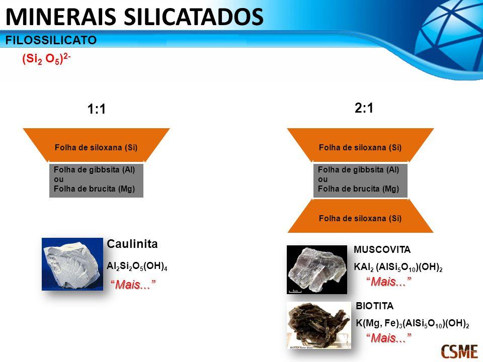 FILOSSILICATO (Si 2 O 5 ) 2- Folha de siloxana (Si) Folha de gibbsita (Al) ou Folha de brucita (Mg) MINERAIS SILICATADOS Folha de siloxana (Si) Folha de gibbsita (Al) ou Folha de brucita (Mg) Folha de siloxana (Si) 1:1 2:1 MUSCOVITA KAl 2 (AlSi 5 O 10 )(OH) 2 BIOTITA K(Mg, Fe) 3 (AlSi 5 O 10 )(OH) 2 Caulinita Al 2 Si 2 O 5 (OH) 4 Mais...