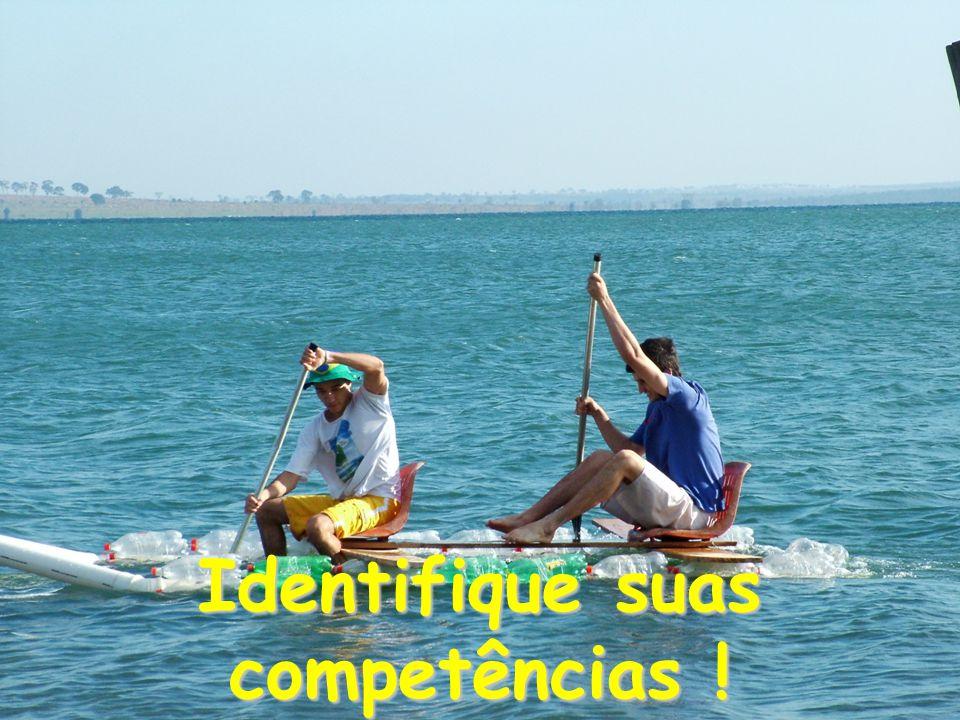 Identifique suas competências !