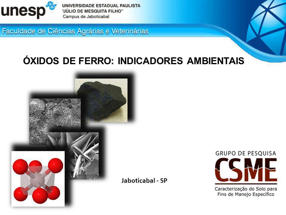 ÓXIDOS DE FERRO: Propriedades Grupos Funcionais Superficiais : cargas pH dependentes Efeito do pH (4, 9 e 11) sobre a distribuição das cargas positivas e negativas do grupamento ferrol ([]-FeOH) na superfície de um óxido de ferro associado à predominância de capacidade de troca de ânions (CTA), ponto de carga zero (PCZ) e capacidade de troca catiônica (CTC) ÓXIDOS DE FERRO: INDICADORES AMBIENTAIS