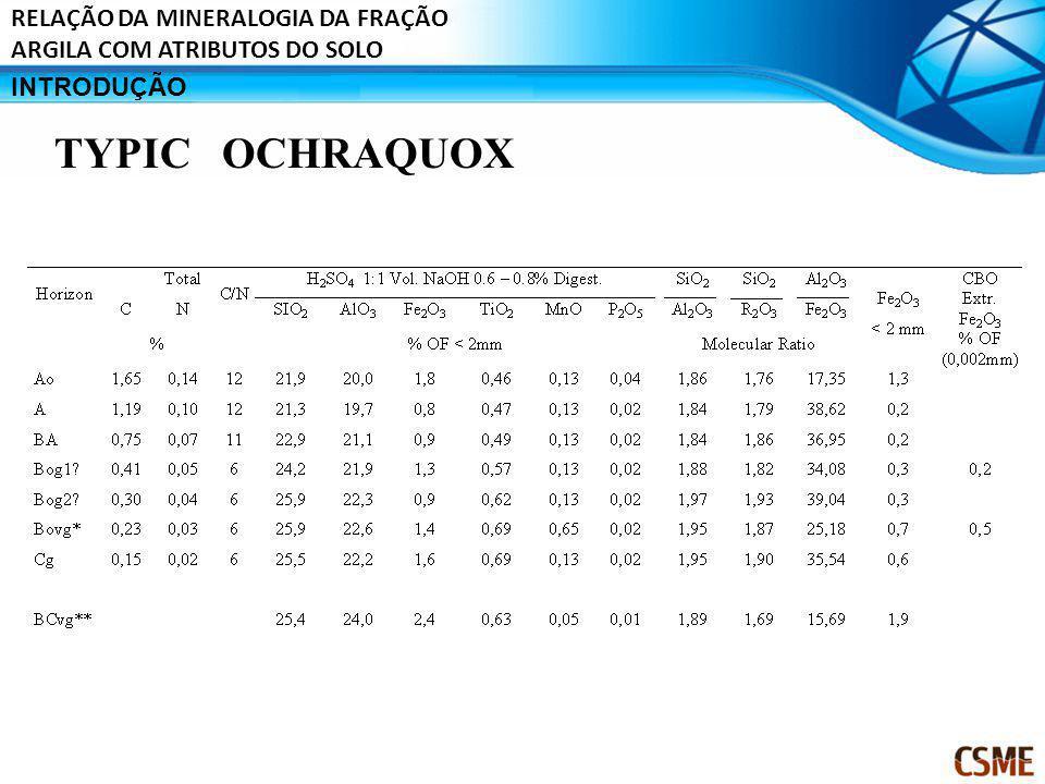 INTRODUÇÃO RELAÇÃO DA MINERALOGIA DA FRAÇÃO ARGILA COM ATRIBUTOS DO SOLO TYPIC OCHRAQUOX